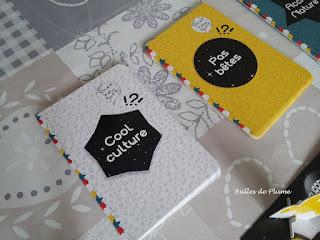 Bulles de Plume - Le Grand jeu des curieux (Gründ)