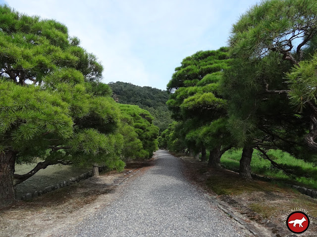 Sentier du villa du bas du Shugaku-in de Kyoto