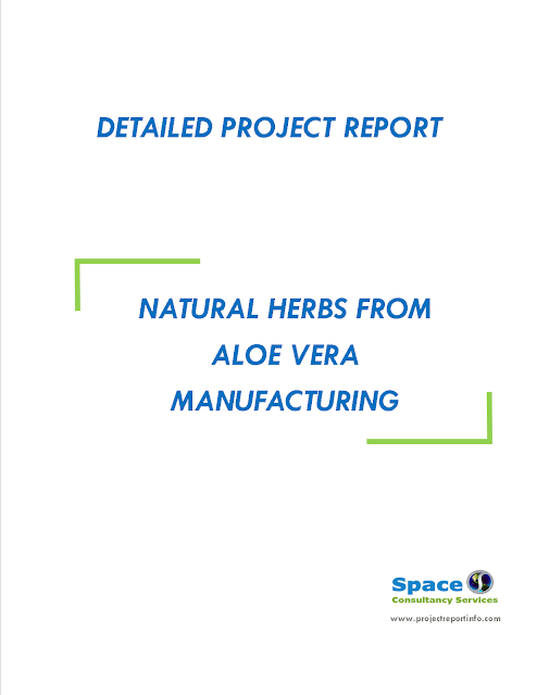 Project Report on Natural Herbs from Aloe Vera Manufacturing