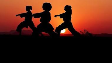 Penjelasan Tentang Poomse Taekwondo