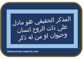 bahasaarab.aseprois.com |Memahami Pengertian Mudzakar Dan Muannats