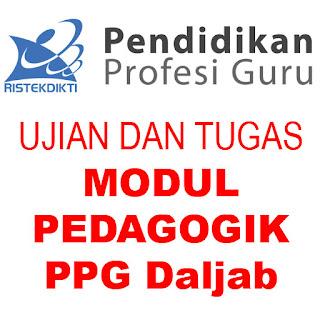Jawaban Tugas, Formatif, Sumatif Modul Pedagogik PPG Daljab