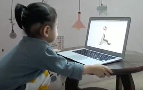 monkey-junior-haicau