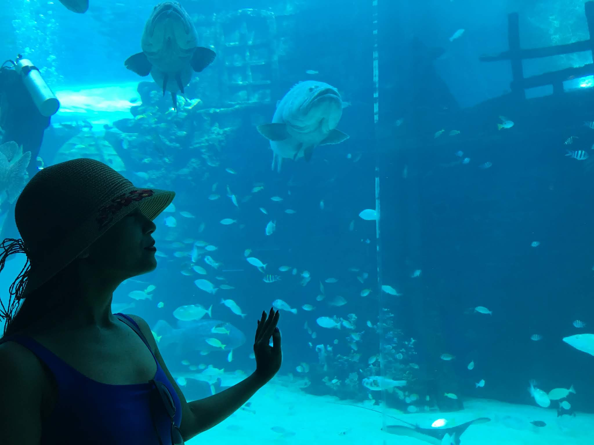 Cebu Ocean Park, Cebu City, Gina Juarez, G Lifestyle Ph