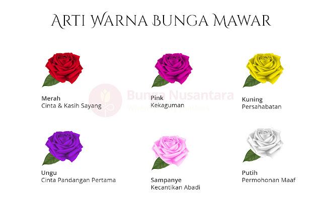 Arti Warna Bunga Mawar - Bunga Nusantara