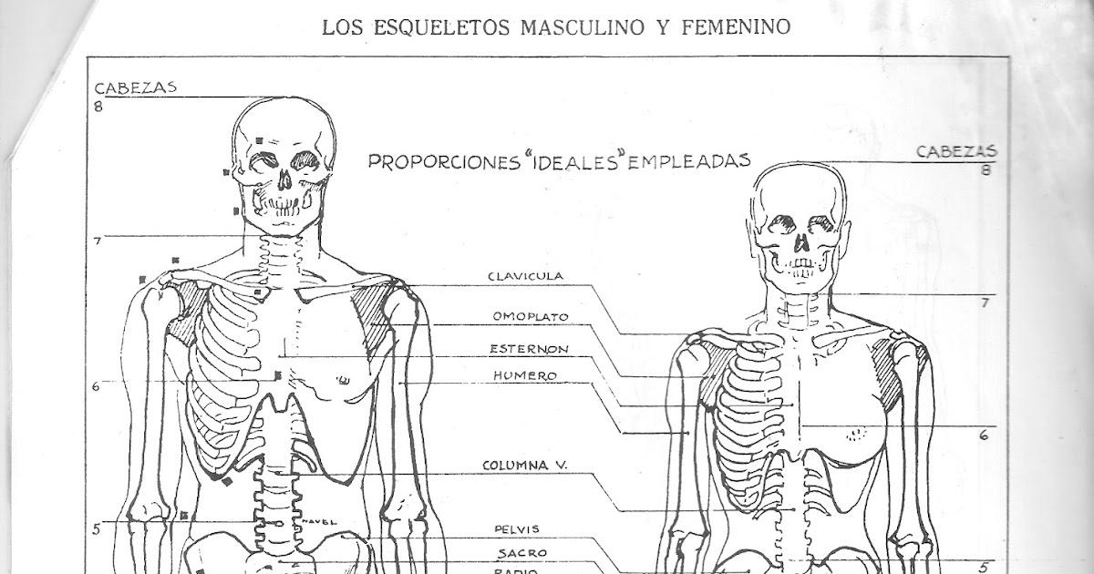 CARTELES DE CALETA OLIVIA: TEORÍA DEL DIBUJO