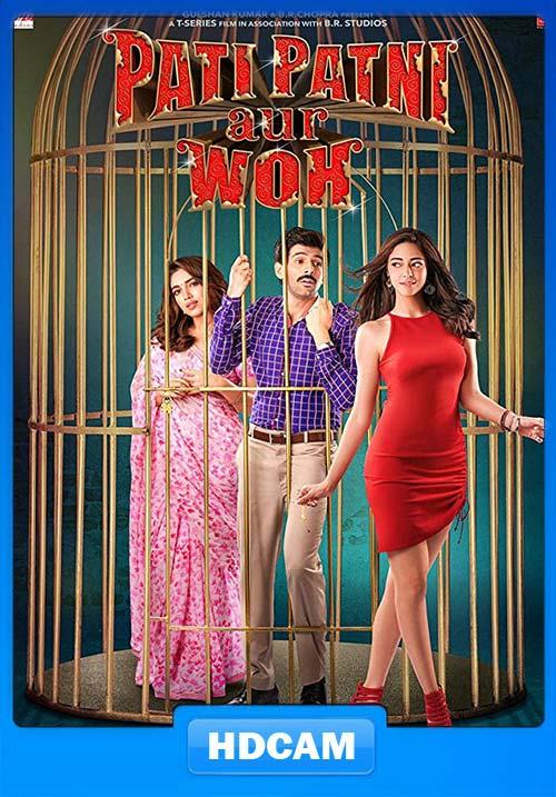 Pati Patni Aur Woh 2019 Hindi 720p HDCAM x264 | 480p 300MB | 100MB HEVC