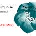 VENCEDORES PASSATEMPO   EP's 'CAMOMILA' de Turquoise