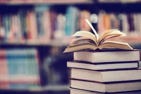 Lo Siento │Capitulo 7. Tus Libros.