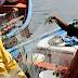 Hasta el 14 de agosto pescadores de la región podrán optar a fondo concursable por $400 millones
