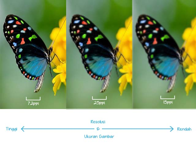 Cara Praktis dan Sederhana Memperkecil Ukuran Gambar