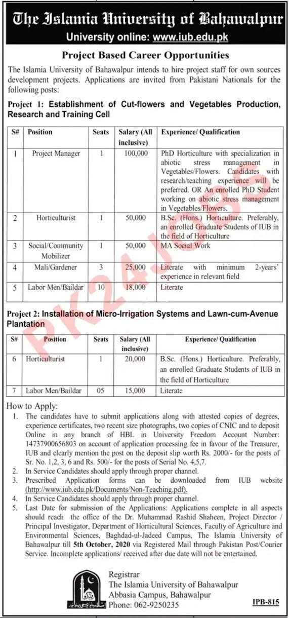 IUB Jobs Sep 2020 Islamia University of Bahawalpur