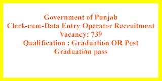 Clerk-cum-Data Entry Operator Recruitment - Government of Punjab