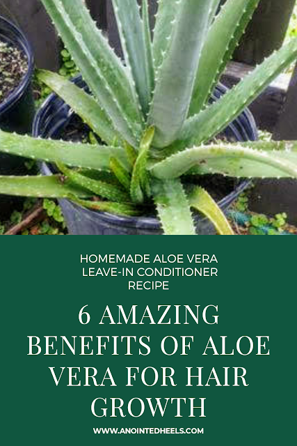 Homemade Aloe Vera Leave In Conditioner