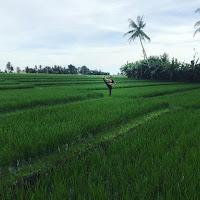 insta - marta_yogadancelove - Bali, Tanah Lot