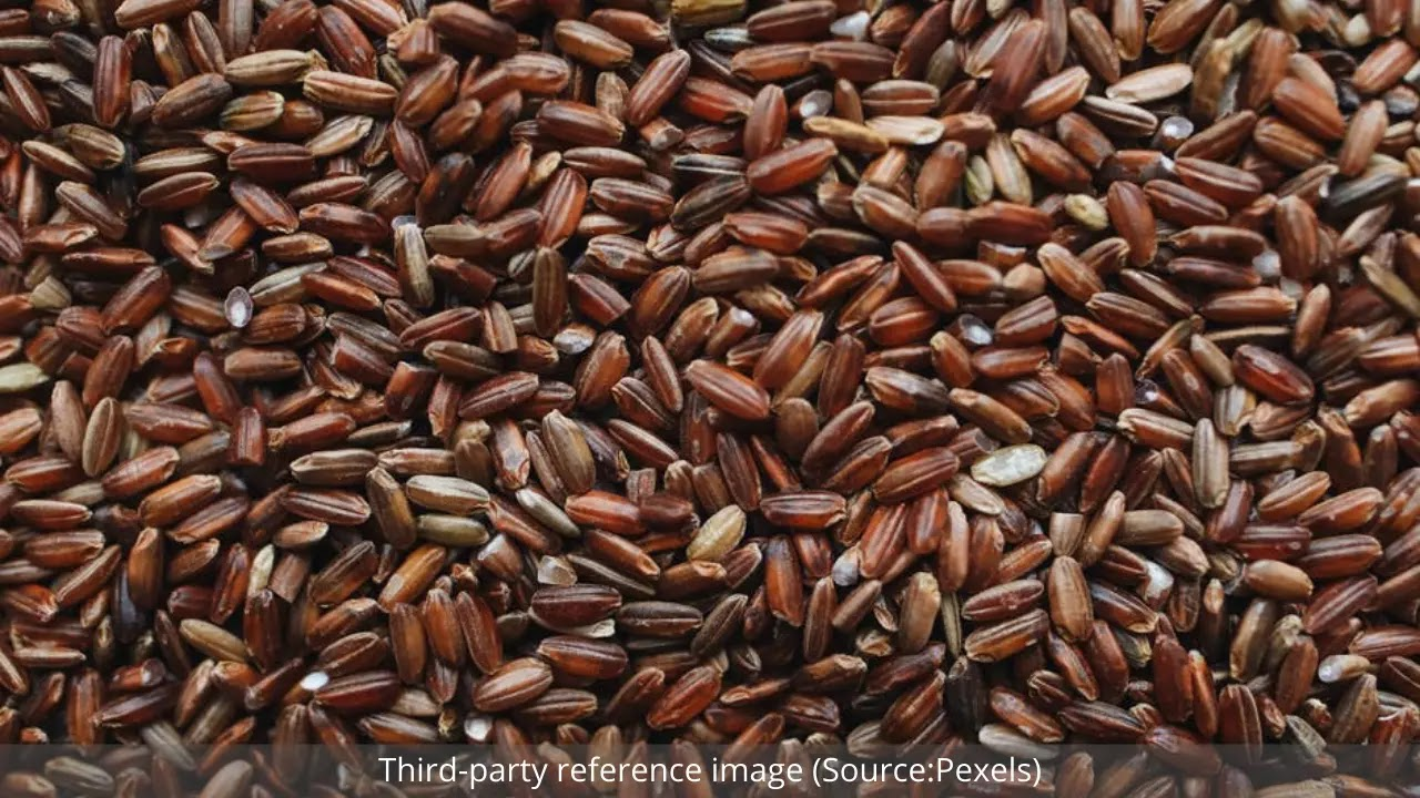 Health Benefits of Brown Rice | HealthInsta