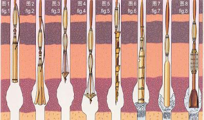 Pengeboran Minyak Bumi a la Tiongkok Kuno