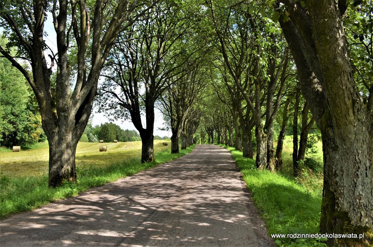 Mosty w Stańczykach oraz Suwalski Park Krajobrazowy