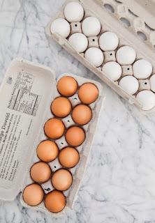 Beda Telur Putih Dan Telur Coklat