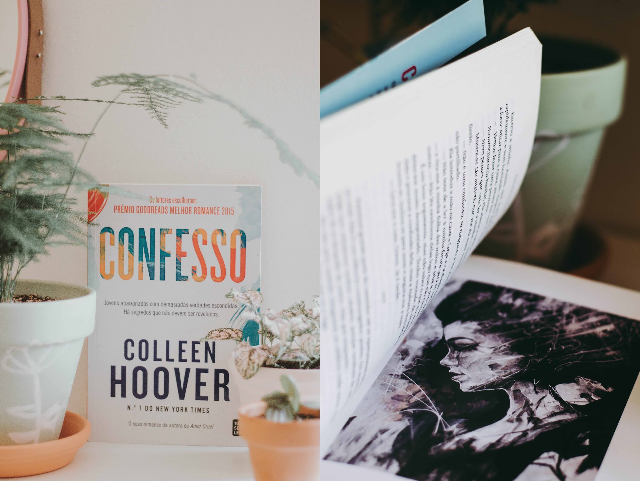colleen hoover confesso livro review