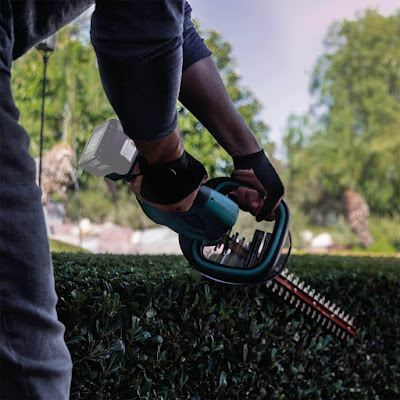 Best Small Hedge Trimmers