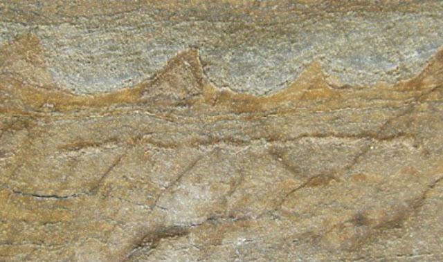 fóssil de 3,7 bilhões de anos encontrado na Groenlandia