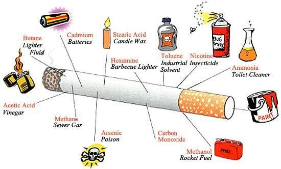 ingredients in cigarette Get statistics on cigarette use in the us and an overview of fda's regulation of cigarettes.