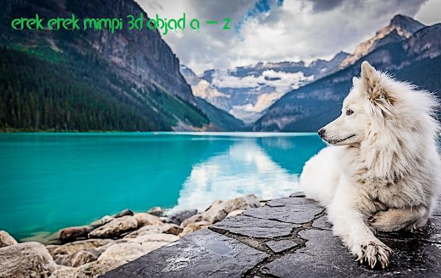 erek erek 3d mimpi hewan abjad a -z lengkap