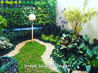 Taman Rumah Minimalis Depan dan Belakang Rumah