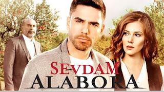 Ver telenovela La Fuerza Del Amor capitulos completos online español gratis