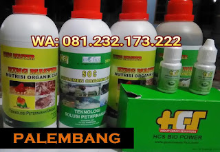 Jual SOC HCS, KINGMASTER, BIOPOWER Siap Kirim Palembang