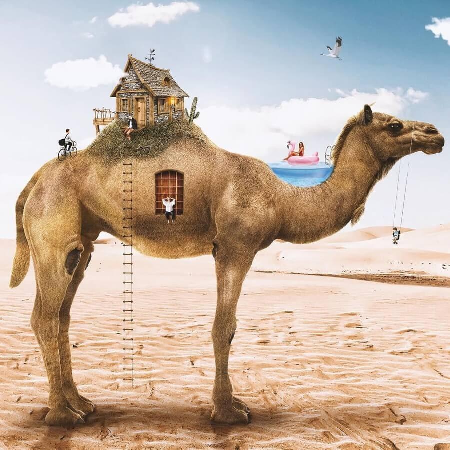 08-Tiny-house-camel-Marcio-Sa-www-designstack-co