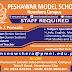 Peshawar Model School (PMS) Nowshera Jobs