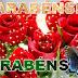 Mensagem De Aniversário com Rosas