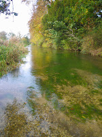 The crystal clear River Lambourn
