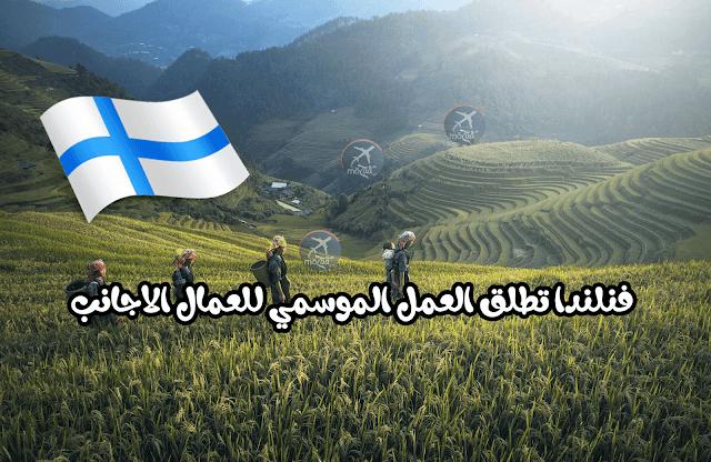 فنلندا تفتتح العمل الموسمي للعمال الاجانب