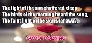 Love Good Morning Quotes, Good Morning Love Quotes for Him