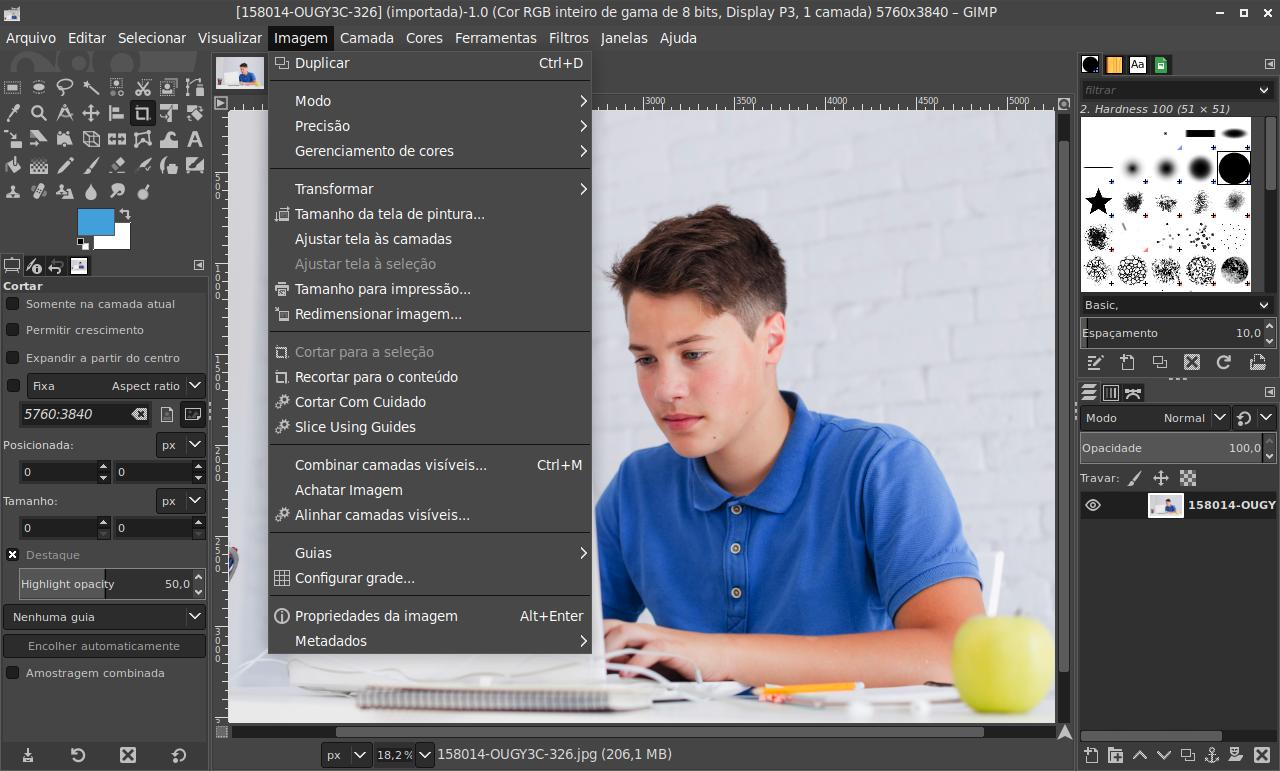 Edição e tratamento de imagens (GIMP)