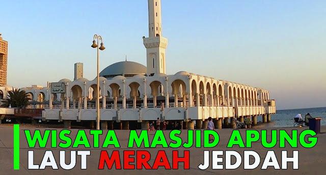 Pedagang Bakso Keliling di Tepi Laut Merah Dekat Masjid Terapung Diserbu Jamaah Umroh Indonesia