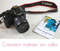 Maîtriser votre appareil photo  de Jérôme Pallé