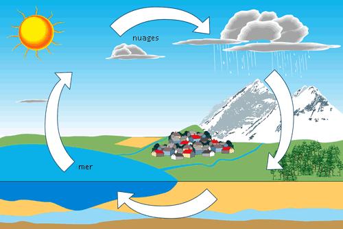 كيف تتم دورة المياه في الطبيعة