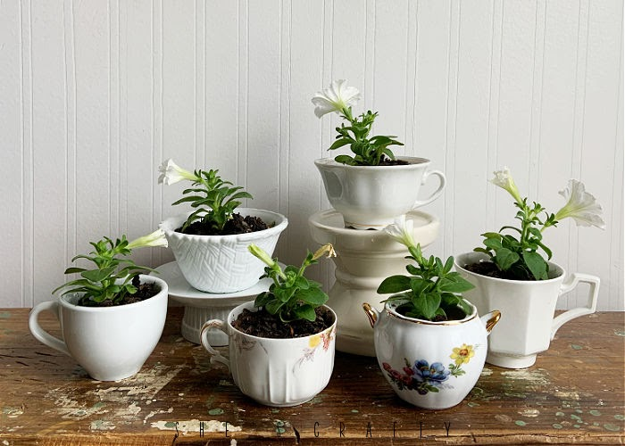 How to put together Tea Cup Flower Gifts for Mother's Day.