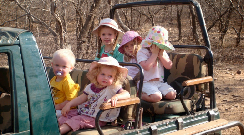 Wildlife safari is one of the things to do when you are on a family holiday in India