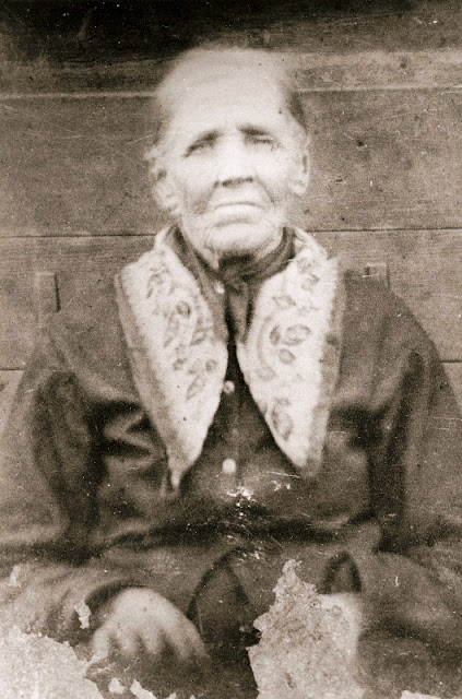 Cherokee Family History