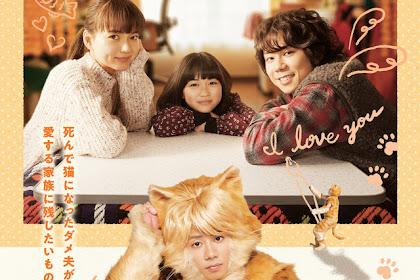Sinopsis Tiger: My Life as a Cat (2019) - Film Jepang