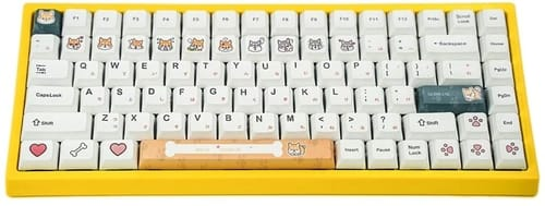 Review Geeksocial 5-Faced Dye-subbed Mechanical Keyboards