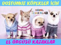 el-orgusu-kopek-kazaklari