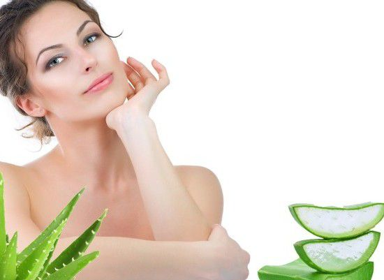 एलोवेरा क्या है ? जानिए एलोवेरा के फायदे और उपयोग [ What is aloe vera?  Know the benefits and uses of aloe vera ]