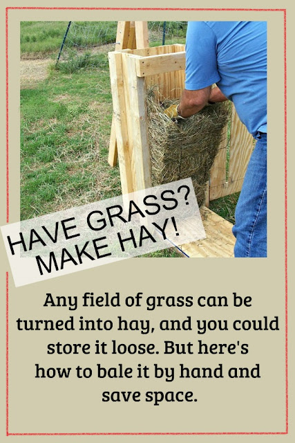 Have grass? You can make hay! Here's how we did it.