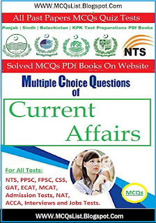 National Testing Service Jobs Test MCQs Guide